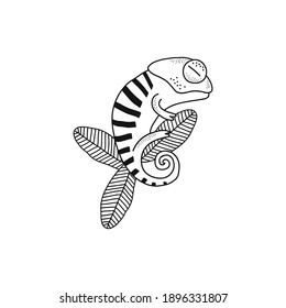 Cute stripy chameleon sleep on leaf isolated vector illustration. Jungle reptile animal black and white childish graphic drawing Perfect for one colour silk screen printing t-shirt design