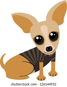 Cute tan chihuahua dog with big googly eyes and huge ears.