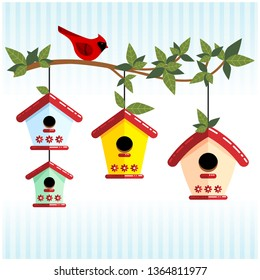 Cute tree branch with colorful bird houses and cardinal bird