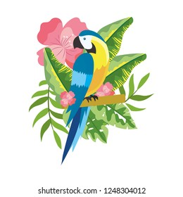 cute tropical parrot cartoon