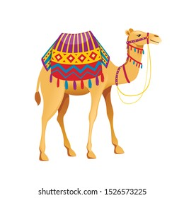 Cute two hump camel with bridle and saddle cartoon animal design flat vector illustration isolated on white background