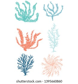 Cute underwater seaweed cartoon vector illustration motif set. Hand drawn isolated coral reef elements clipart for nautical oceanology blog, WORD graphic, undersea web buttons.