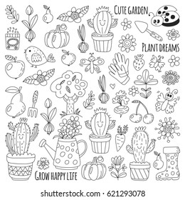 Cactus Isolated Set Collection Home Plants Stock Vector Royalty