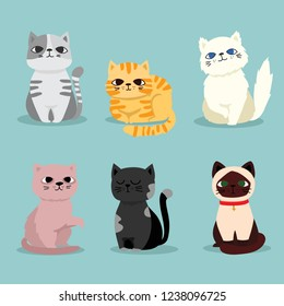Cute vector illustration of cat breeds, pet animal set in a cartoon flat style