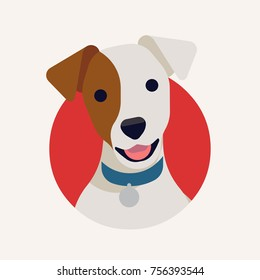 Cute vector portrait of Jack Russell terrier dog in flat design. Cool vector round icon on small dog head