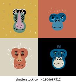 Cute vector primates in flat style. Chimpanzee, Gorilla,  Mandrill, Pygathrix roxellana, Macaca fuscata - primates cartoon character. Vector print in modern style
