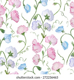 Cute vector watercolor seamless pattern with sweet peas.