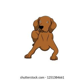 Cute Vizsla Cartoon Dog. Vector illustration of purebred vizsla dog.