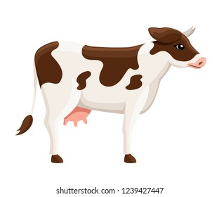 Cute white brown cow. Farm domestic animal. Flat style animal design. Vector illustration isolated on white background.