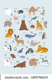 Cute wild animals Alphabet - Vector illustration. ABC Poster Cartoon doodle characters in scandinavian style for children