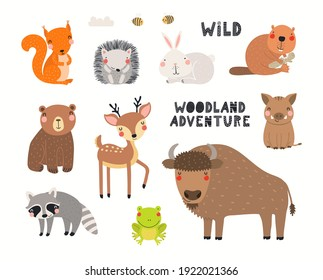 Cute wild animals clipart collection, isolated on white. Hand drawn vector illustration. Woodland elements set. Scandinavian style flat design. Concept for kids fashion, textile print, poster, card