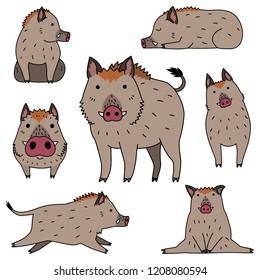 cute wild boar doodle drawing set