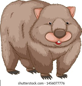 Cute wombat cartoon vector and illustration