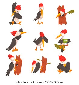 Cute woodpecker set, funny bird cartoon character in different situations vector Illustration on a white background