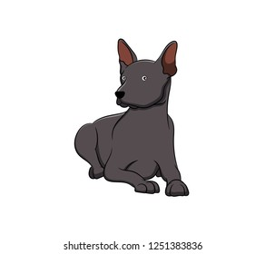 Cute Xoloitzcuintli Cartoon Dog. Vector illustration of purebred xoloitzcuintli dog.