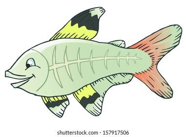 Clipart X Ray Fish