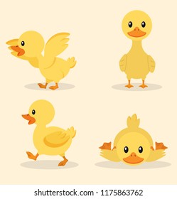 Cute yellow duck collection set
