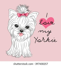 Cute Yorkshire Terrier on a pink background
