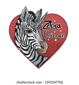 cute zebra lovely unicorn illustration