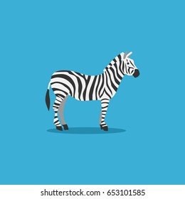 cute zebra.colorful illustration