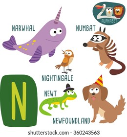 Cute zoo alphabet in vector. N letter. Funny cartoon animals: nightingale, newt, newfoundland, narwhal, numbat. Alphabet design in a colorful style.