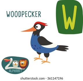 Cute zoo alphabet in vector. W letter for Woodpecker. Funny cartoon animals. Alphabet design in a colorful style.