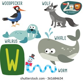 Cute Zoo alphabet in vector. W letter for Whale, Worm, Walrus, Wolf, Woodpecker. funny cartoon animals. alphabet design in a colorful style