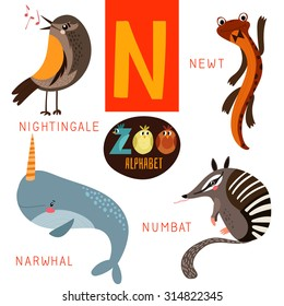 Cute zoo alphabet in vector.N letter. Funny cartoon animals:Nightingale,newt,narwhal,numbat. Alphabet design in a colorful style.