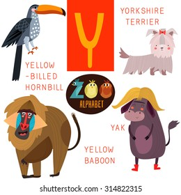 Cute zoo alphabet in vector.Y letter. Funny cartoon animals:Yellow-billed hornbill,yorkshire terrier,yak,yellow baboon. Alphabet design in a colorful style.