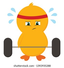 Cute-little sweating chick with all its efforts trying to lift dumbbells at the gym is wearing a red and white striped bandana  vector  color drawing or illustration
