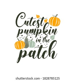 Cutest pumpkin in the patch inspirational slogan inscription. Vector thanksgiving quote. Illustration for prints on t-shirts and bags, posters, cards. Pumpkin season, Fall vector design.
