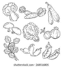 Cutie Vegetables
