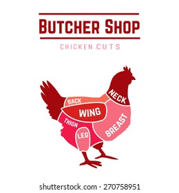 Cuts of chicken butcher diagram. Vector illustration