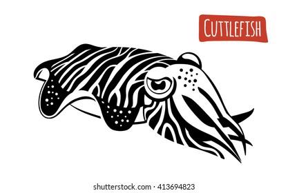 Cuttlefish, vector illustration, cartoon style