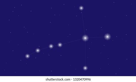 Cygnus constellation vector design. Constellation of Cygnus illustration