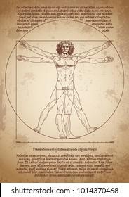 Da Vinci's Vitruvian Man. Leonardo da Vinci drawing. Da Vinci sketches.