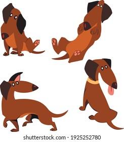 Dachshund cartoon set poses. Cute set of dogs. Cartoon cute dog.