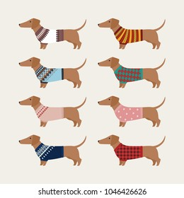Dachshund character wearing knit sweater of various patterns. vector illustration flat design