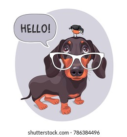 Dachshund Dog in a big glasses with the bird. Vector illustration.