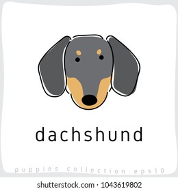 Dachshund : Dog Breed Collection : Vector Illustration