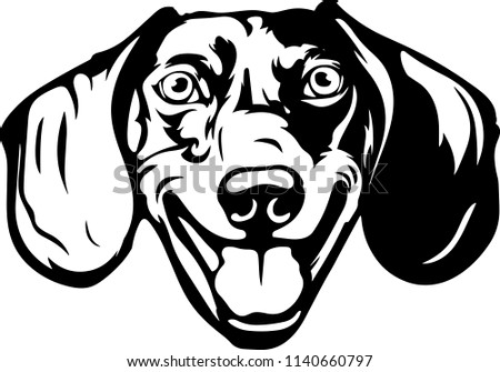 Dachshund Dog Breed Pet Face Head Stock Vector Royalty Free