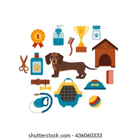Dachshund dog infographic concept with dog care isolated elements.