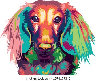 dachshund dog pop art. long-haired miniature dachshund dog in colorful vector.