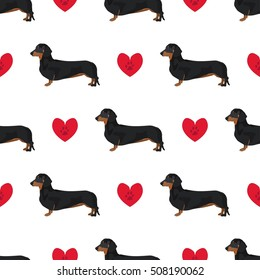 Dachshund dog seamless pattern colorful background with hearts