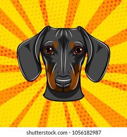 Dachshund face. Dog portrait muzzle head. Dog breed. Vector illustration