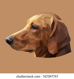 Dachshund low poly design. Triangle vector illustration.