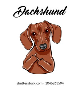 Dachshund middle finger gesture. Dog with gestures. Vector illustration. Dachshund lettering.