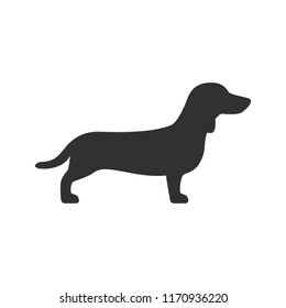 Dachshund. monochrome icon