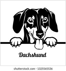 Dachshund - Peeking Dogs - breed face head isolated on white - vector stock