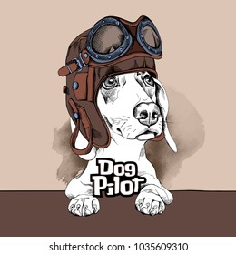 Dachshund in a pilot helmet and glasses. Vector illustration.